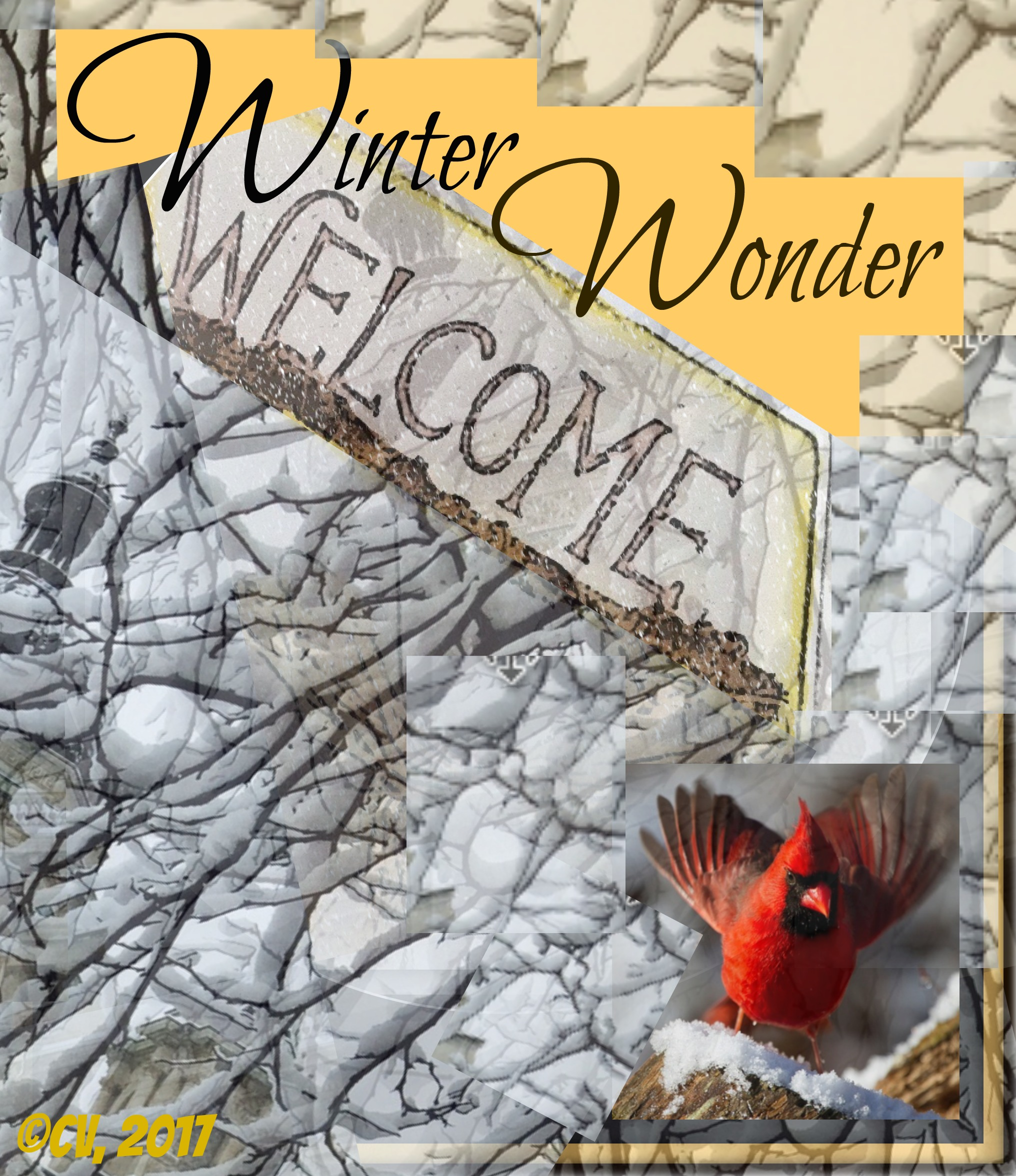 CV_Winter_Wonder_Cover_Shot.jpg